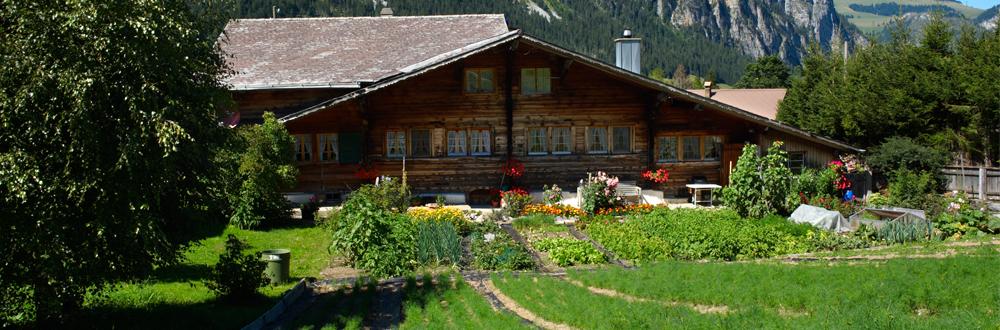Swiss Alpine Herbs Bio Qualität